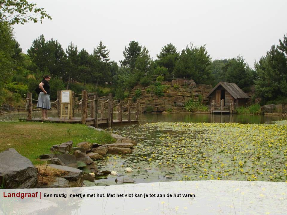Landgraaf | Een rustig meertje met hut. Met het vlot kan je tot aan de hut varen.