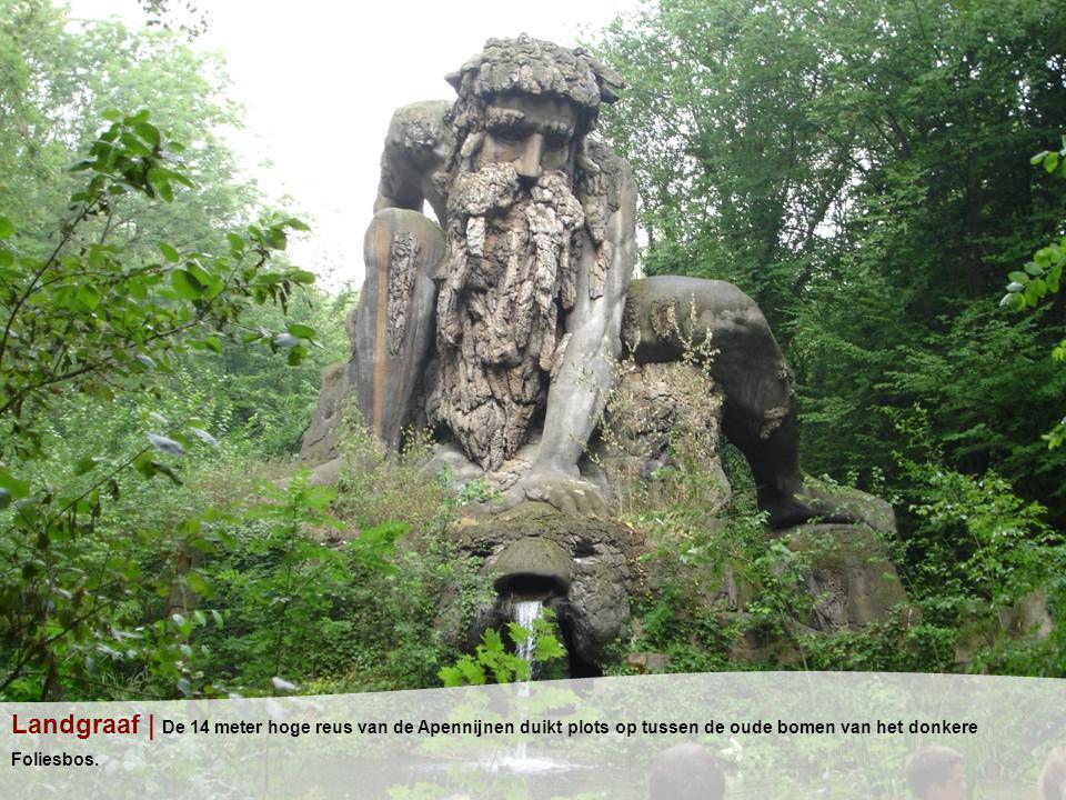 Landgraaf | De 14 meter hoge reus van de Apennijnen duikt plots op tussen de oude bomen van het donkere Foliesbos.