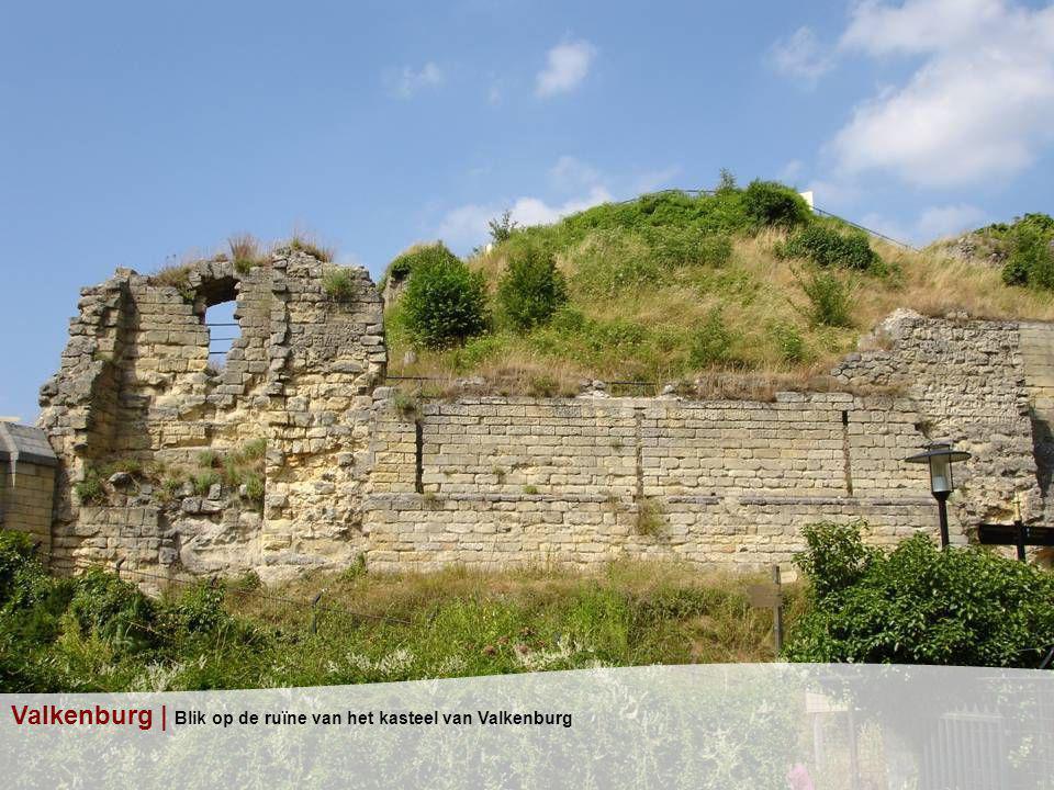 Valkenburg | Blik op de ruïne van het kasteel van Valkenburg