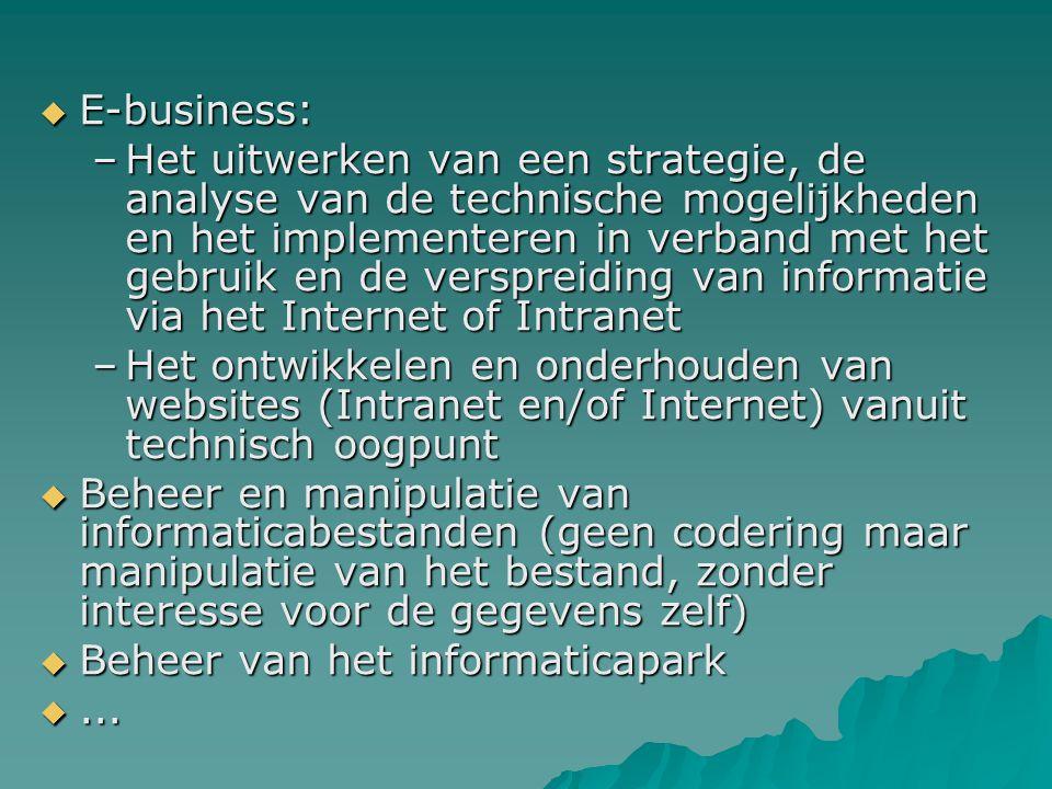  E-business: –Het uitwerken van een strategie, de analyse van de technische mogelijkheden en het implementeren in verband met het gebruik en de versp
