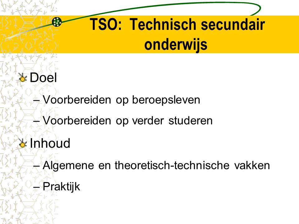 TSO: Technisch secundair onderwijs Doel –Voorbereiden op beroepsleven –Voorbereiden op verder studeren Inhoud –Algemene en theoretisch-technische vakken –Praktijk