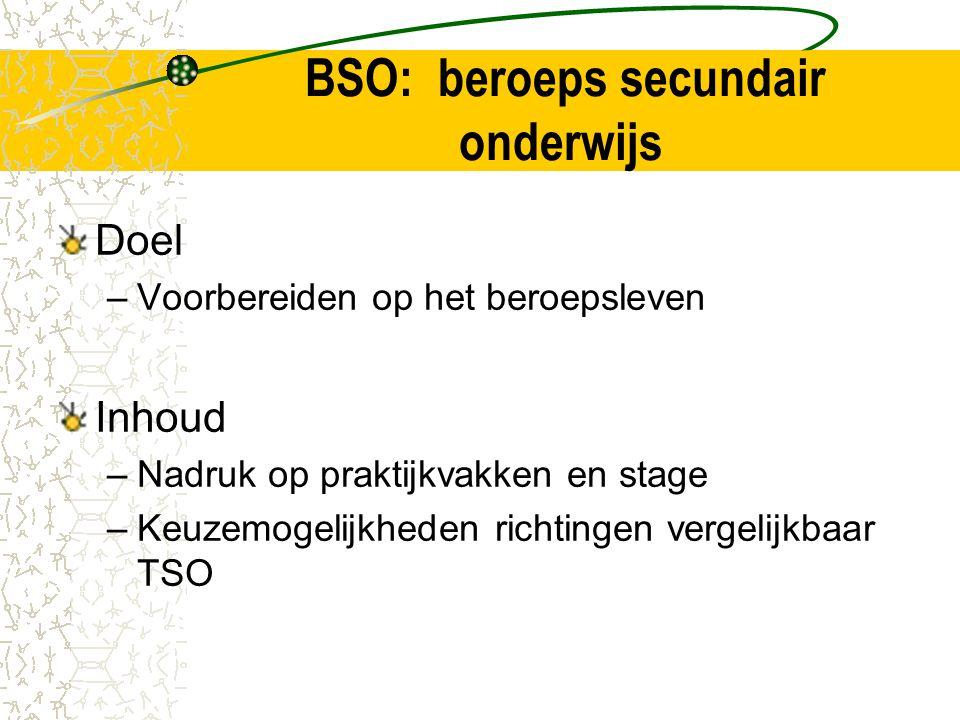 BSO: beroeps secundair onderwijs Doel –Voorbereiden op het beroepsleven Inhoud –Nadruk op praktijkvakken en stage –Keuzemogelijkheden richtingen vergelijkbaar TSO