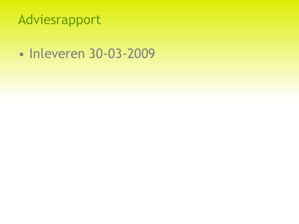 Adviesrapport Inleveren 30-03-2009