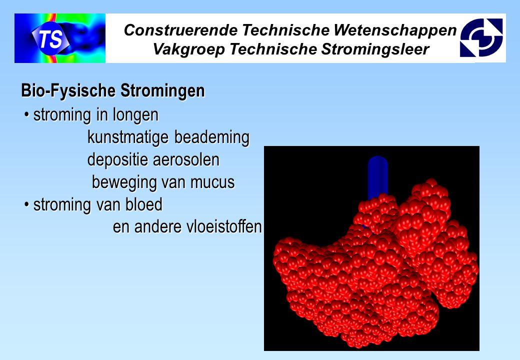 Construerende Technische Wetenschappen Vakgroep Technische Stromingsleer Bio-Fysische Stromingen stroming in longen stroming in longen kunstmatige bea