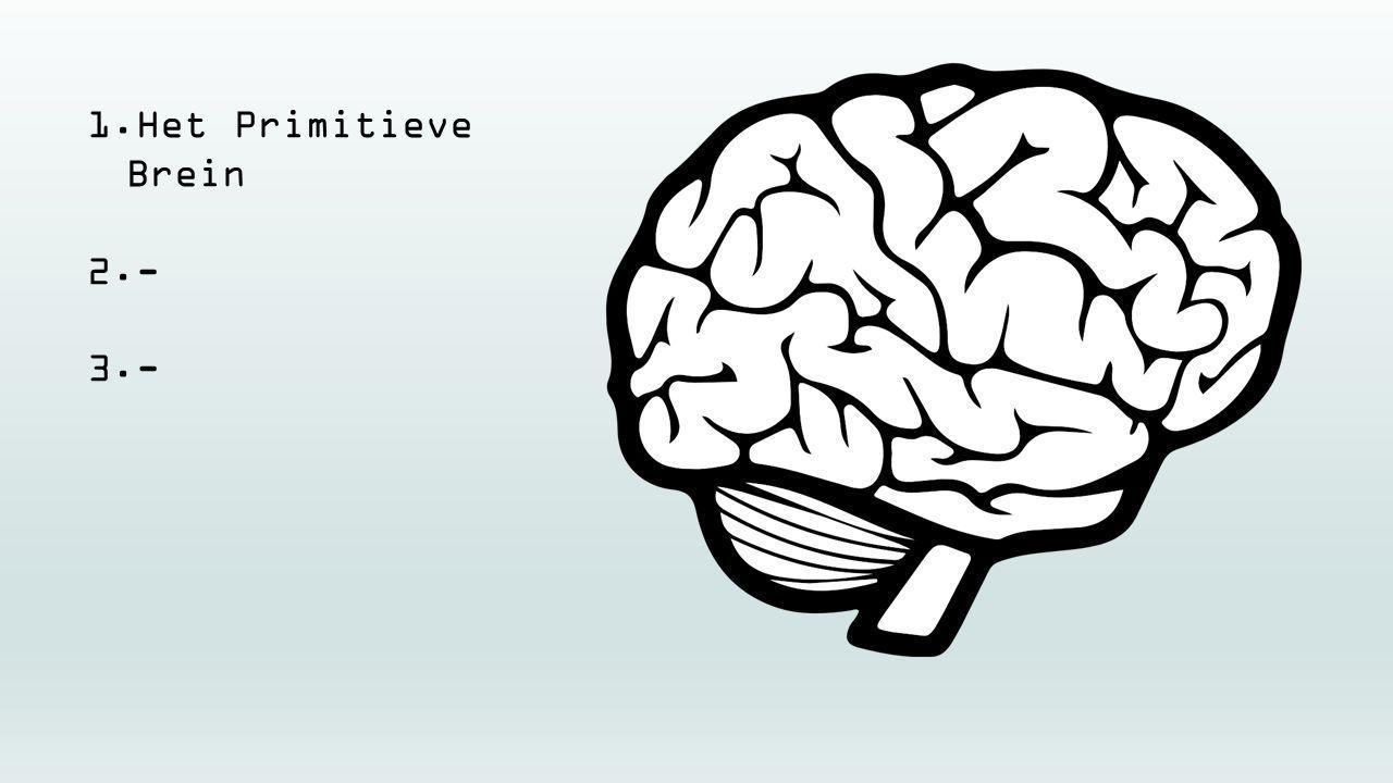 1.Het Primitieve Brein 2.- 3.-
