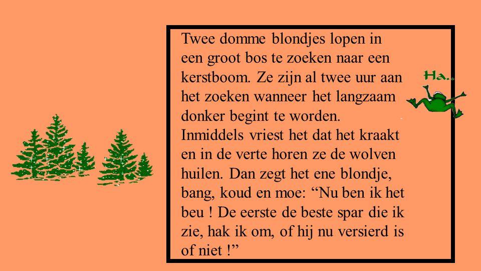 Twee domme blondjes lopen in een groot bos te zoeken naar een kerstboom. Ze zijn al twee uur aan het zoeken wanneer het langzaam donker begint te word
