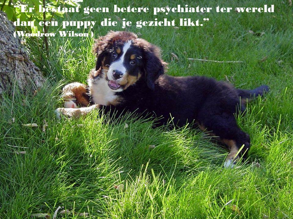 """""""Dieren en de natuur betekenen voor een mens niet veel, als die mens zelf niet veel betekent.."""""""