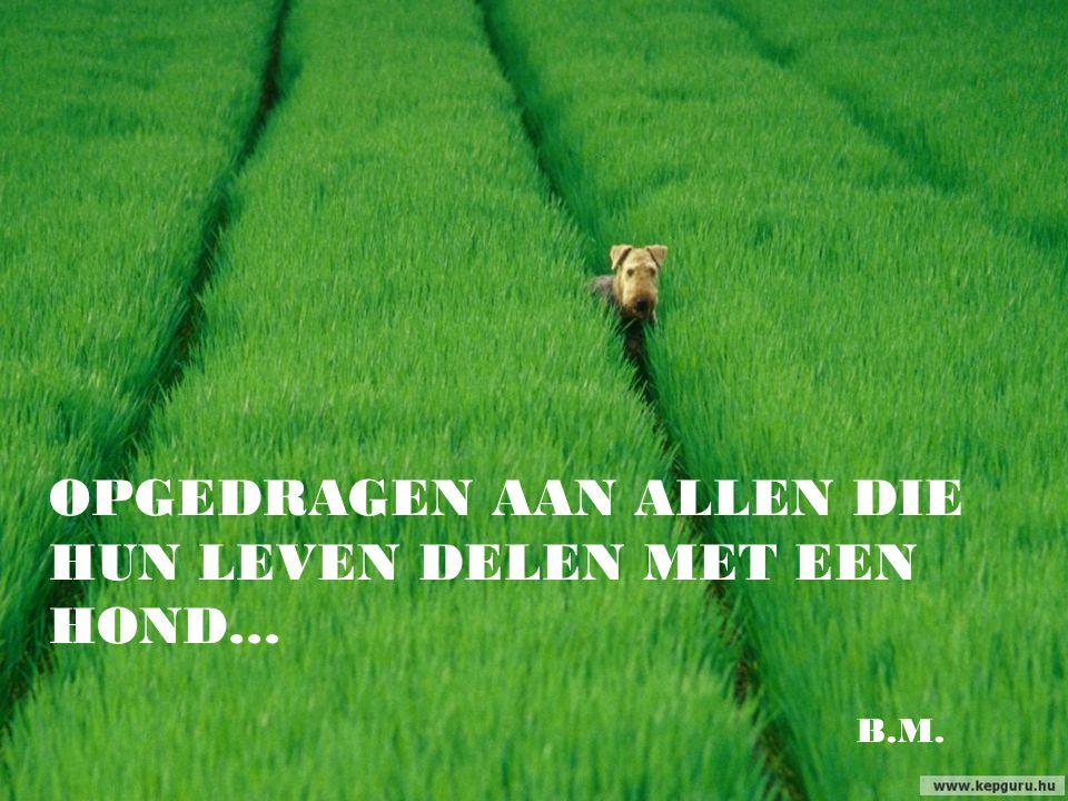 …hij zal onze vriend zijn voor altijd, altijd... ( Rudyard Kipling)