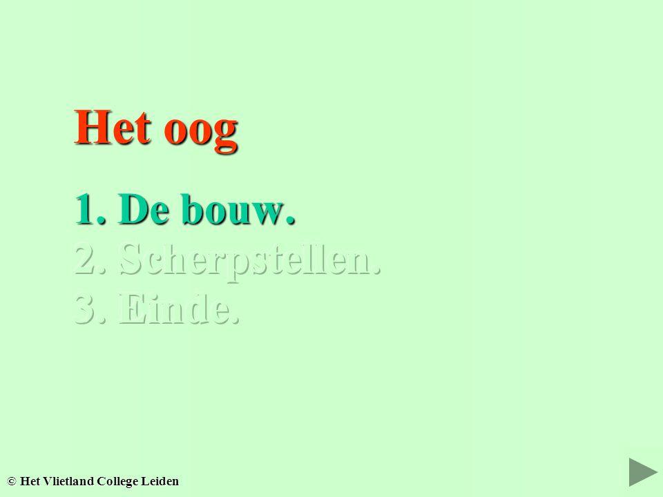Het oog Het oog 1. De bouw. 1. De bouw. 2. Scherpstellen. 2. Scherpstellen. © Het Vlietland College Leiden 3. Einde. 3. Einde.