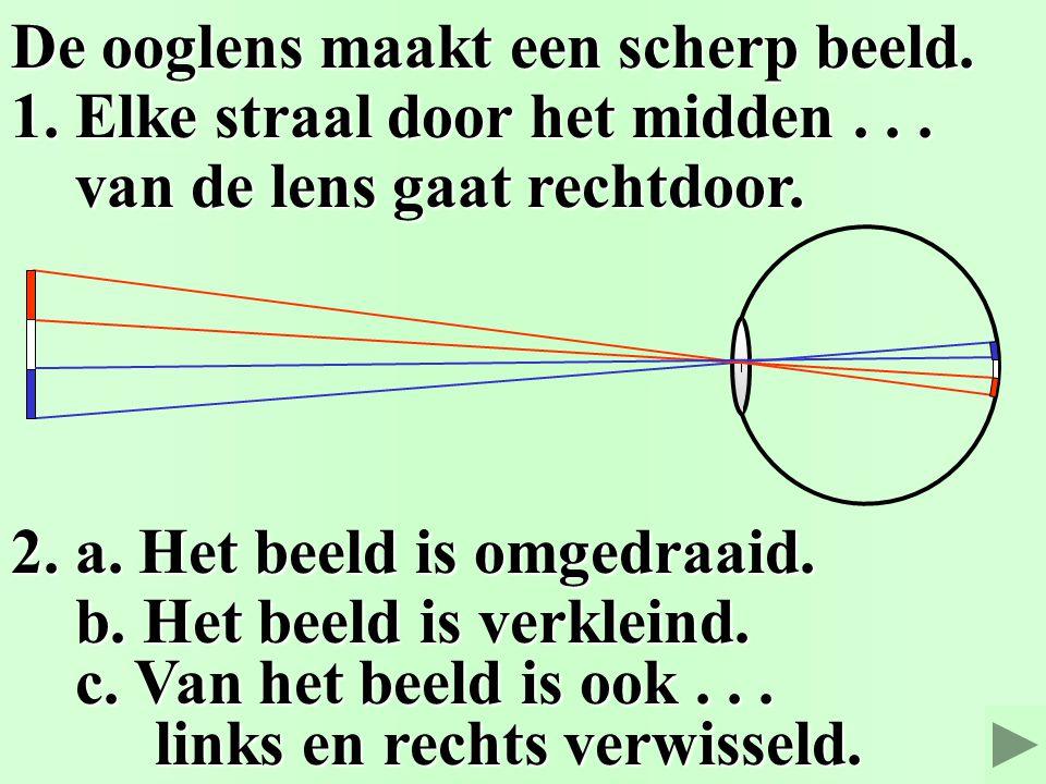Het oog Het oog 2. Scherpstellen. 2. Scherpstellen. © Het Vlietland College Leiden