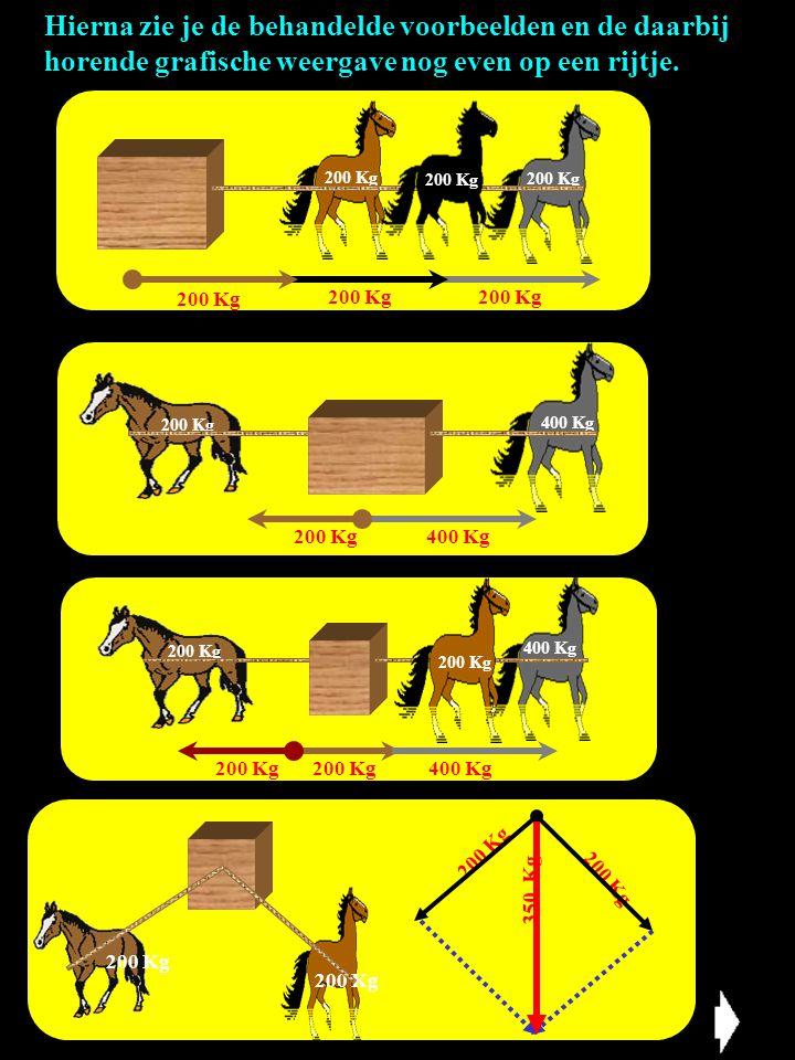 Hierna zie je de behandelde voorbeelden en de daarbij horende grafische weergave nog even op een rijtje. 200 Kg 400 Kg 200 Kg 400 Kg 200 Kg 400 Kg200