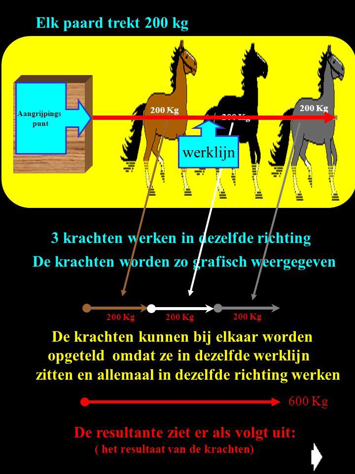 3 krachten werken in dezelfde richting Elk paard trekt 200 kg De krachten worden zo grafisch weergegeven De krachten kunnen bij elkaar worden opgeteld
