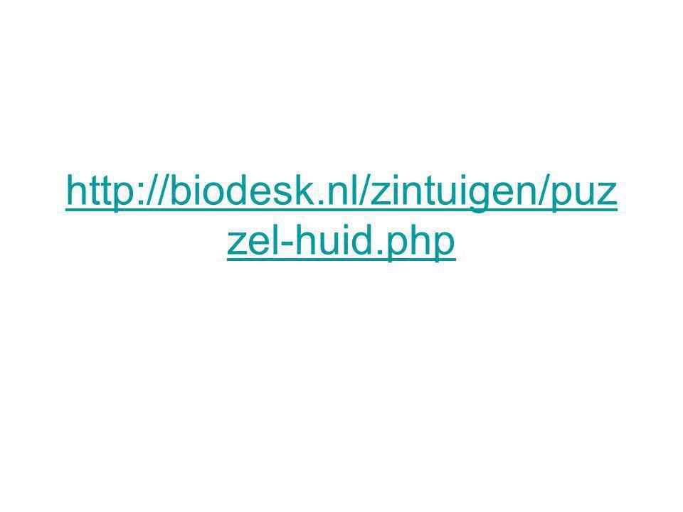 http://biodesk.nl/zintuigen/puz zel-huid.php