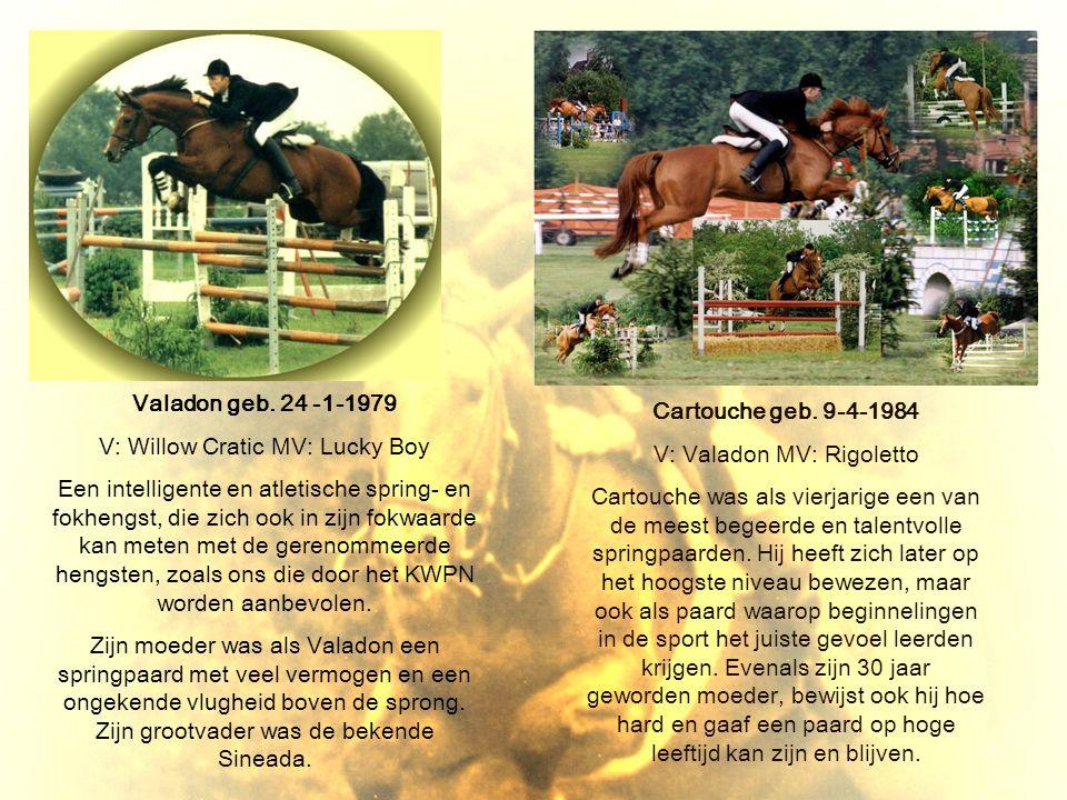 Valadon geb. 24 -1-1979 V: Willow Cratic MV: Lucky Boy Een intelligente en atletische spring- en fokhengst, die zich ook in zijn fokwaarde kan meten m