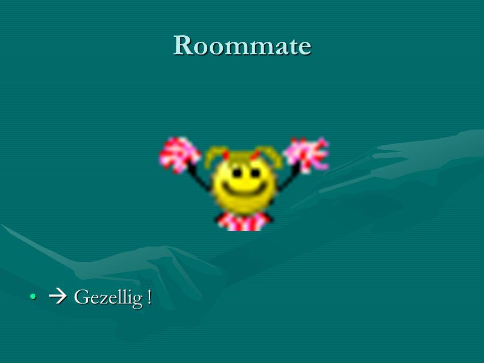 Roommate  Gezellig !  Gezellig !