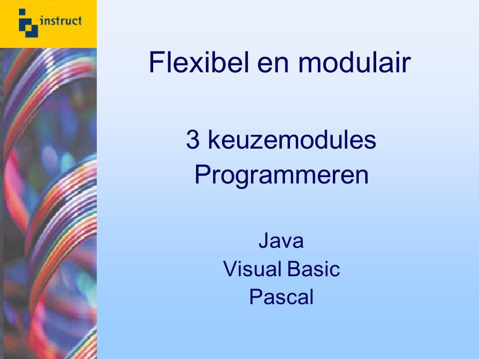 Flexibel en modulair 3 keuzemodules Programmeren Java Visual Basic Pascal