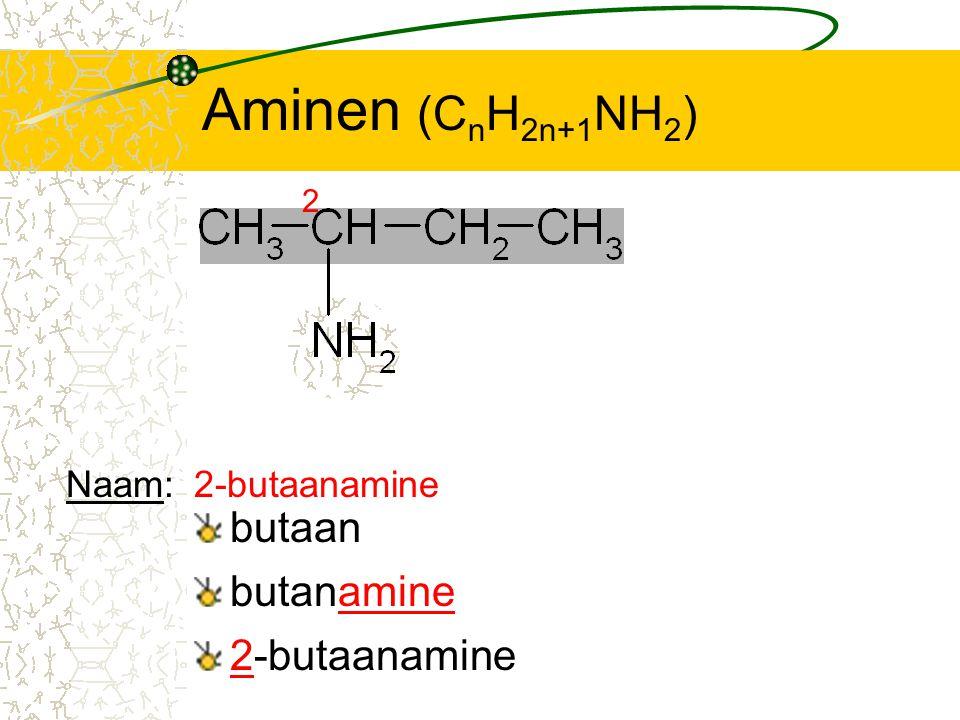 Aminen (C n H 2n+1 NH 2 ) butaan 2 butanamine 2-butaanamine Naam:2-butaanamine
