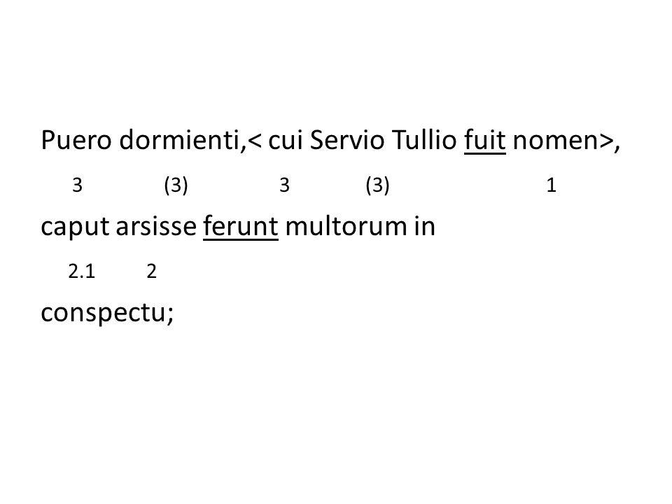Puero dormienti,, Men zegt dat voor een slapende jongen, voor wie de naam Servius Tullius was, caput arsisse ferunt multorum in het hoofd in brand heeft gestaan onder het oog van velen.