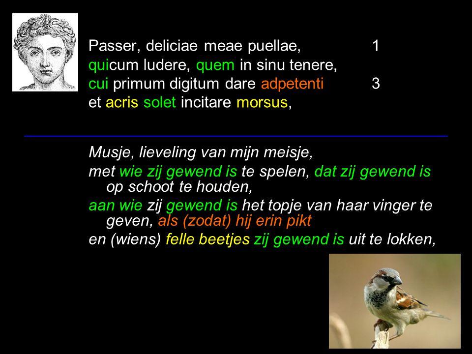 Passer, deliciae meae puellae,1 quicum ludere, quem in sinu tenere, cui primum digitum dare adpetenti3 et acris solet incitare morsus, Musje, lievelin