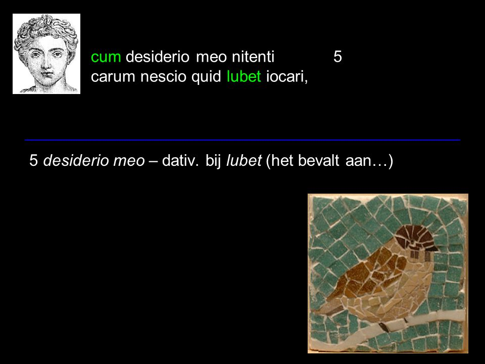 cum desiderio meo nitenti5 carum nescio quid lubet iocari, 5 desiderio meo – dativ. bij lubet (het bevalt aan…)
