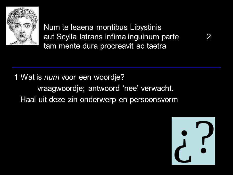 Num te leaena montibus Libystinis aut Scylla latrans infima inguinum parte2 tam mente dura procreavit ac taetra 1 Wat is num voor een woordje.