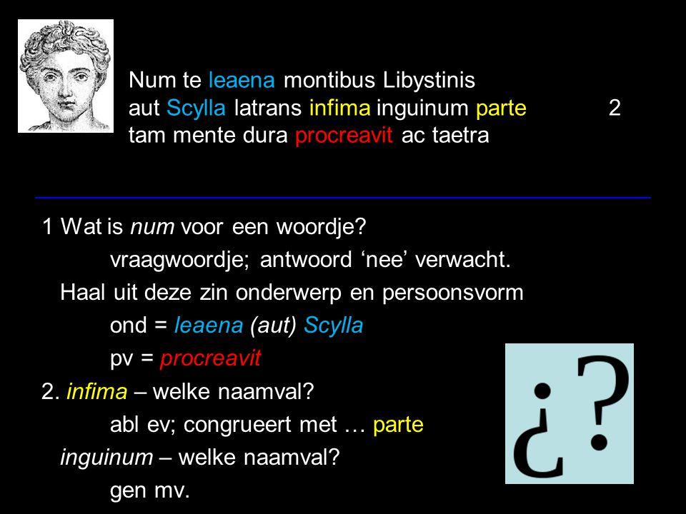 Num te leaena montibus Libystinis aut Scylla latrans infima inguinum parte2 tam mente dura procreavit ac taetra 1 Wat is num voor een woordje? vraagwo