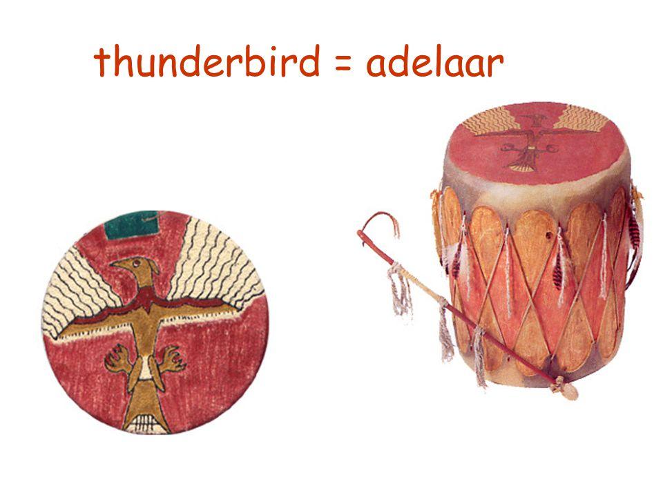 thunderbird = adelaar