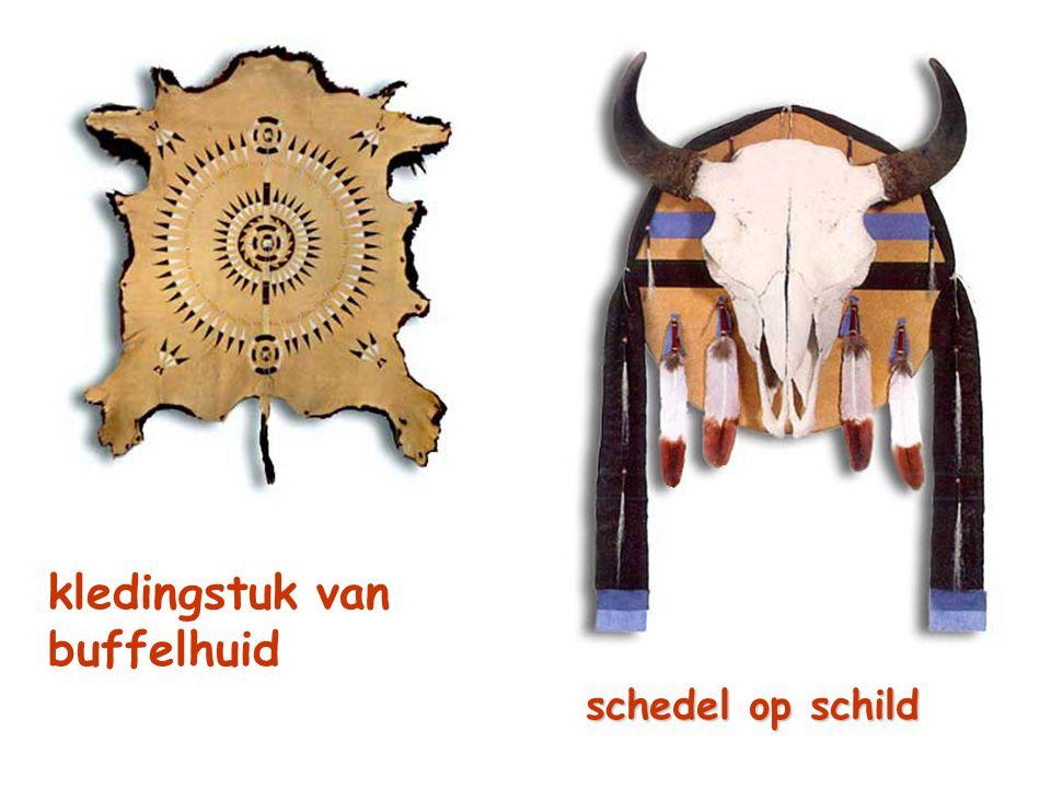 kledingstuk van buffelhuid schedel op schild