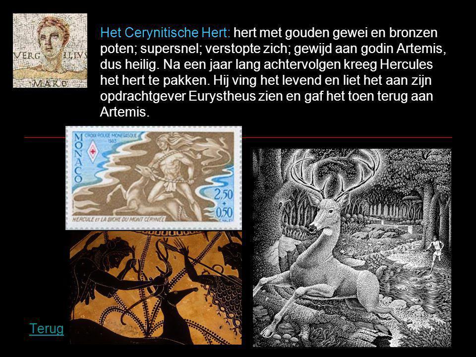 Het Cerynitische Hert: hert met gouden gewei en bronzen poten; supersnel; verstopte zich; gewijd aan godin Artemis, dus heilig.