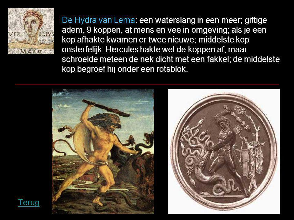 De Hydra van Lerna: een waterslang in een meer; giftige adem, 9 koppen, at mens en vee in omgeving; als je een kop afhakte kwamen er twee nieuwe; middelste kop onsterfelijk.
