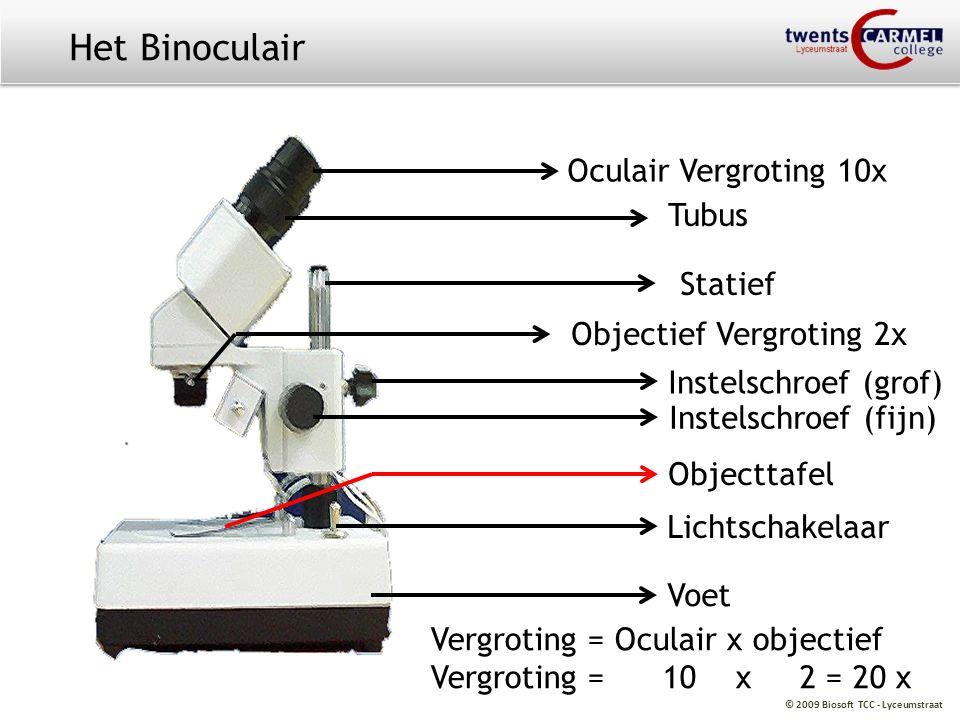 © 2009 Biosoft TCC - Lyceumstraat Oculair Vergroting 10x Tubus Statief Objectief Vergroting 2x Vergroting = Oculair x objectief Vergroting = 10 x 2 =