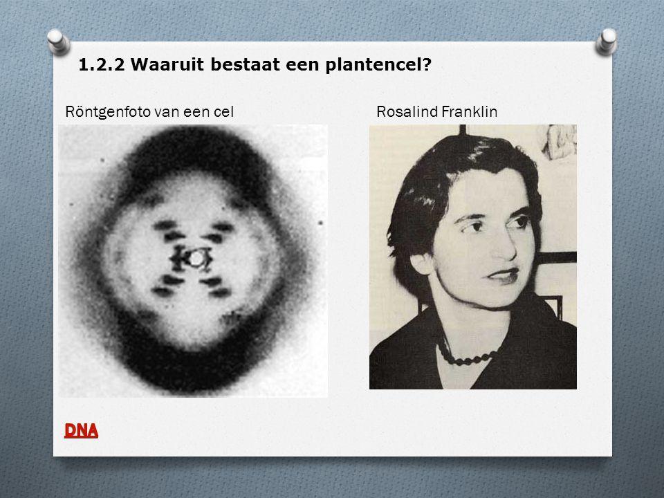 1.2.2 Waaruit bestaat een plantencel? Röntgenfoto van een cel Rosalind Franklin