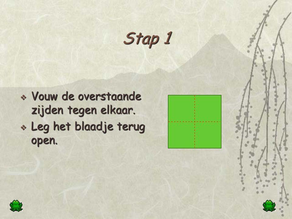 Hoe maak je een vierkant. Neem een blad papier.  Vouw een hoek naar de overstaande zijde.