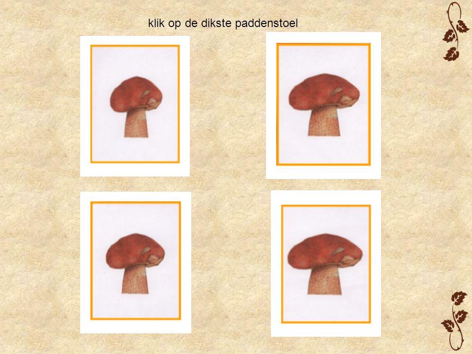 klik op de dikste paddenstoel