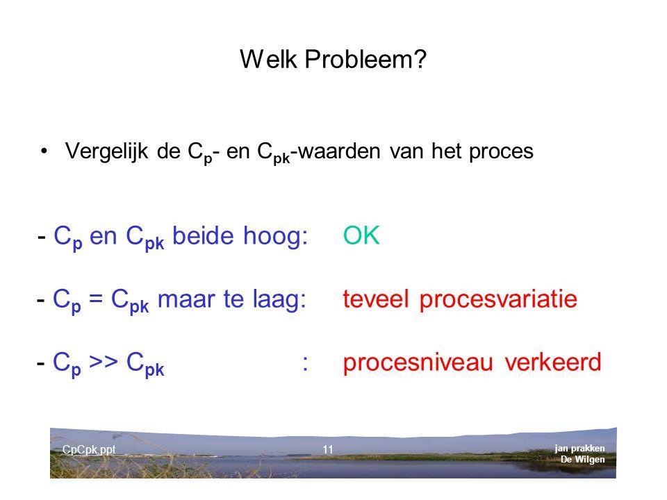 jan prakken De Wilgen CpCpk.ppt11 Welk Probleem.