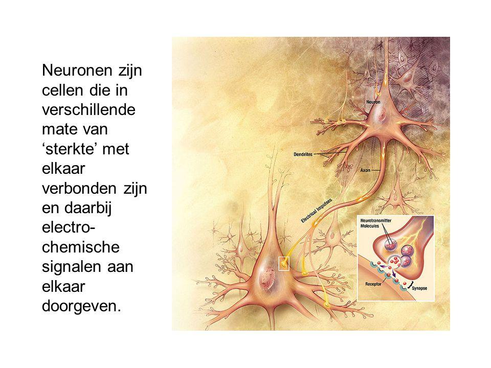 Neuronen zijn cellen die in verschillende mate van 'sterkte' met elkaar verbonden zijn en daarbij electro- chemische signalen aan elkaar doorgeven.