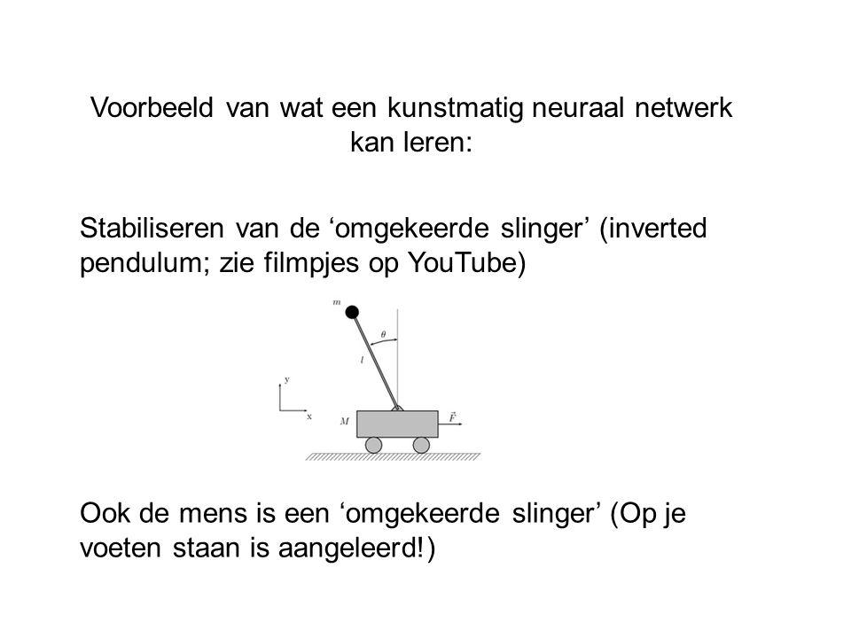 Voorbeeld van wat een kunstmatig neuraal netwerk kan leren: Stabiliseren van de 'omgekeerde slinger' (inverted pendulum; zie filmpjes op YouTube) Ook
