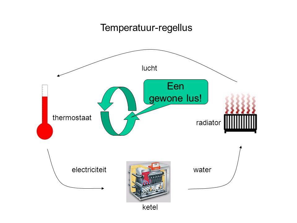 Temperatuur-regellus thermostaat water lucht Een gewone lus! electriciteit ketel radiator