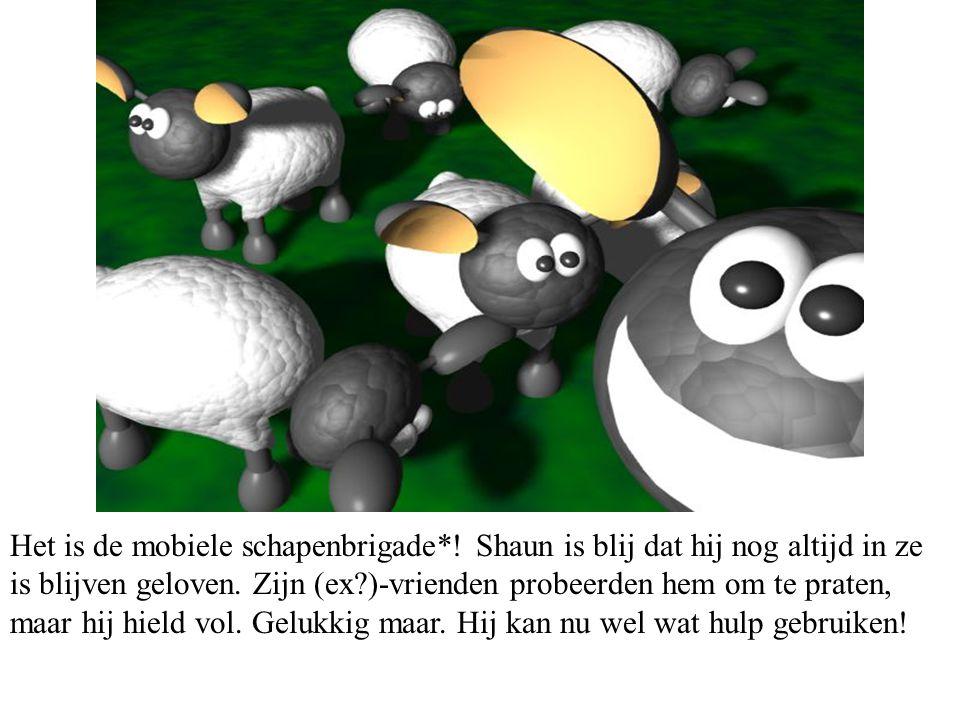 Het is de mobiele schapenbrigade*. Shaun is blij dat hij nog altijd in ze is blijven geloven.
