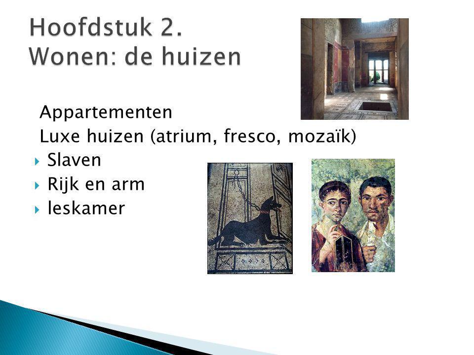 Appartementen Luxe huizen (atrium, fresco, mozaïk)  Slaven  Rijk en arm  leskamer