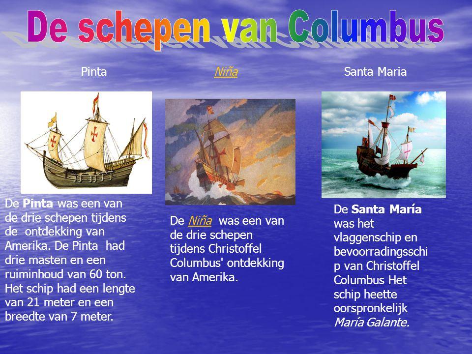 De Pinta was een van de drie schepen tijdens de ontdekking van Amerika.