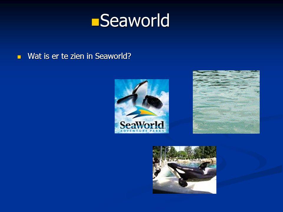 Wat is er te zien in Seaworld? Wat is er te zien in Seaworld? Seaworld Seaworld