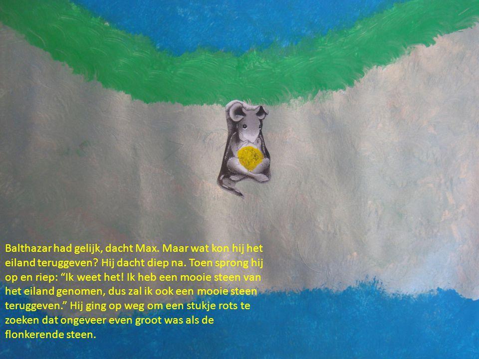 """Balthazar had gelijk, dacht Max. Maar wat kon hij het eiland teruggeven? Hij dacht diep na. Toen sprong hij op en riep: """"Ik weet het! Ik heb een mooie"""