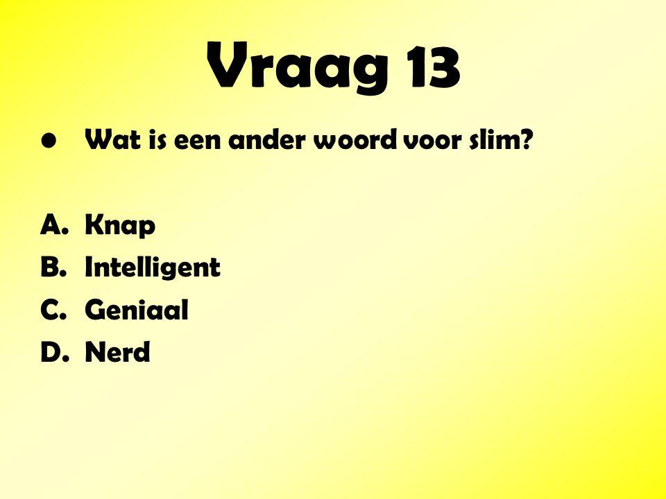 Vraag 13 Wat is een ander woord voor slim? A.Knap B.Intelligent C.Geniaal D.Nerd