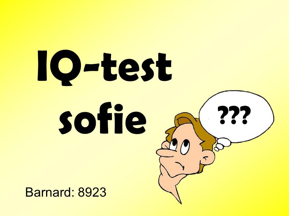 IQ-test sofie Barnard: 8923 ???