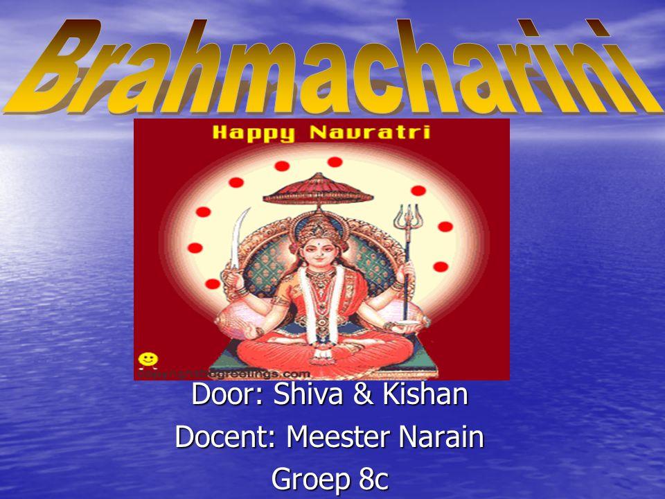 Door: Shiva & Kishan Docent: Meester Narain Groep 8c