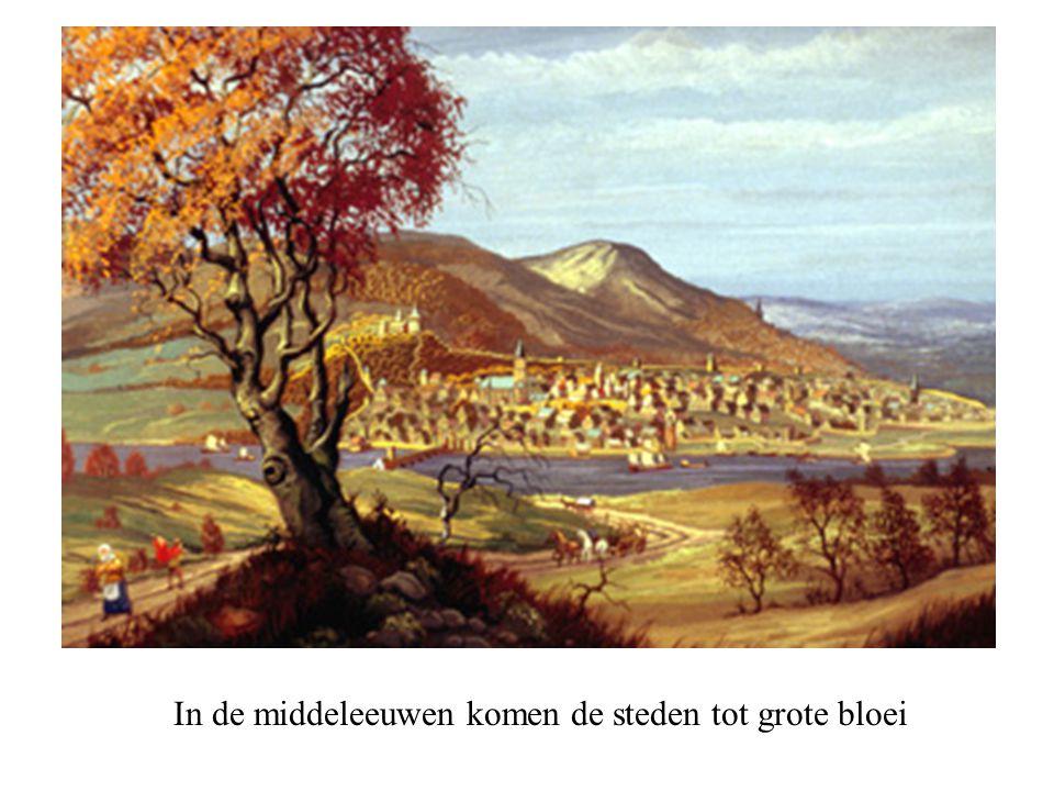 In de middeleeuwen komen de steden tot grote bloei