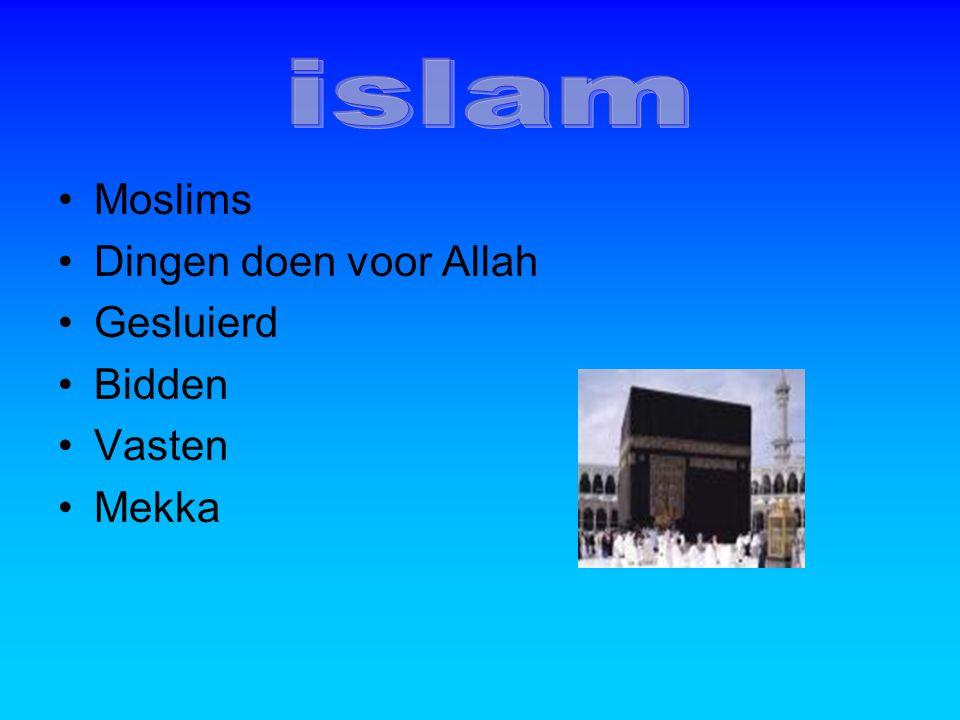 Moslims Dingen doen voor Allah Gesluierd Bidden Vasten Mekka