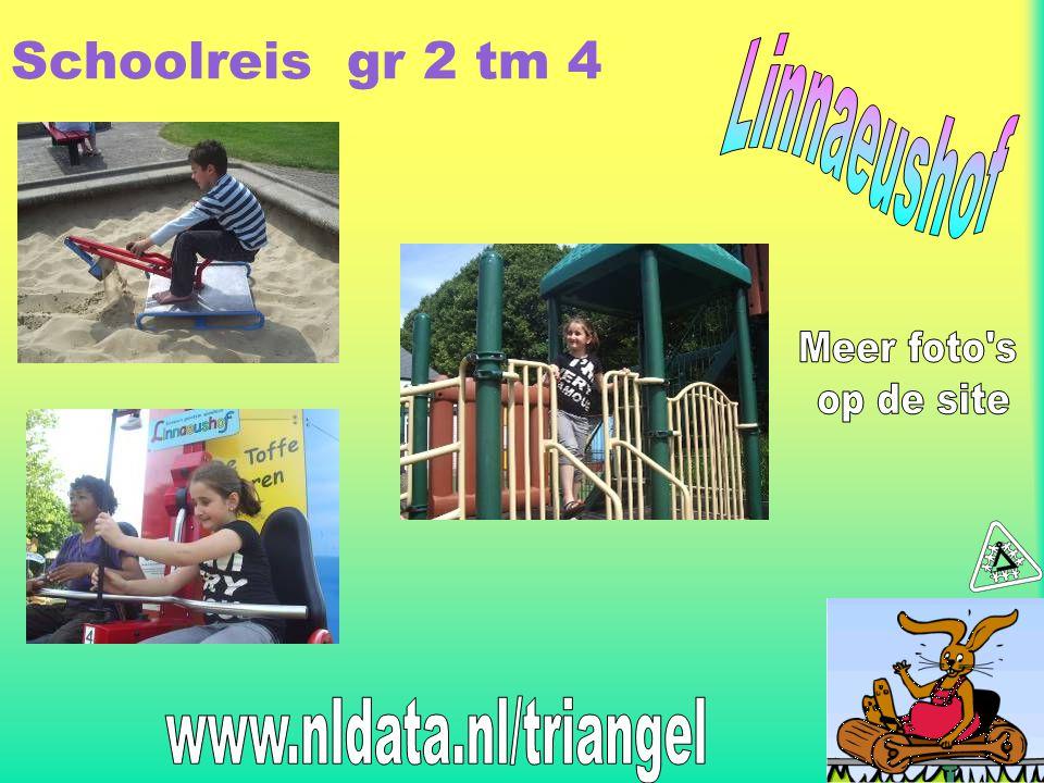 Schoolreis gr 2 tm 4