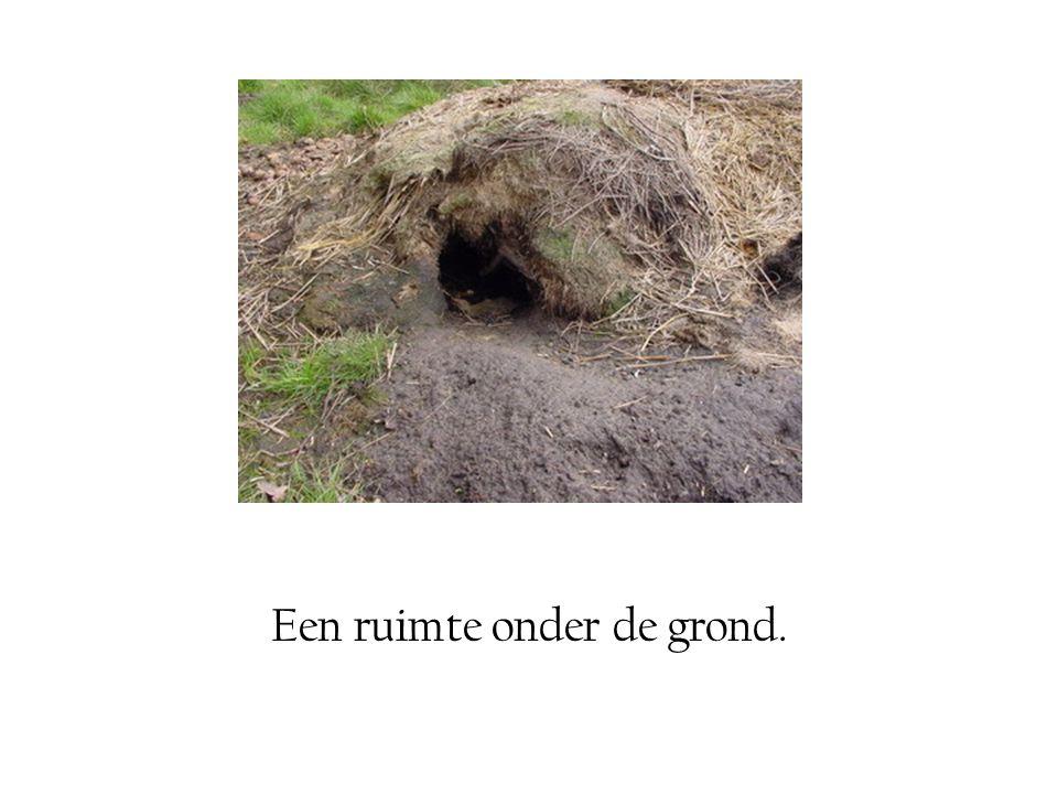 Een ruimte onder de grond.